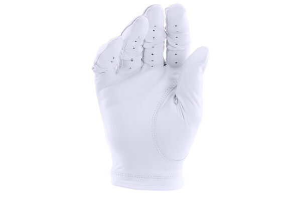 UA Strikeskin Tour Glove LH