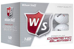Wilson Staff DX2 Blemish 12 Ball Pack