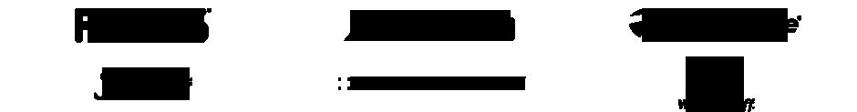 Custom Fit Logo